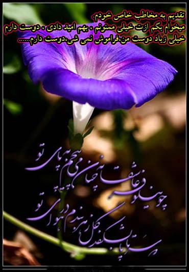 تصویر: http://up.najiforum.ir/uploads/137262277676751.jpg