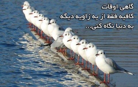 تصویر: http://up.najiforum.ir/uploads/138925302158431.jpg